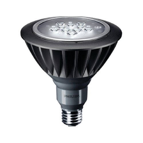 LED MASTER spot PAR38 Outdoor